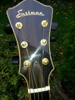 Photo #4 Eastman AJ816